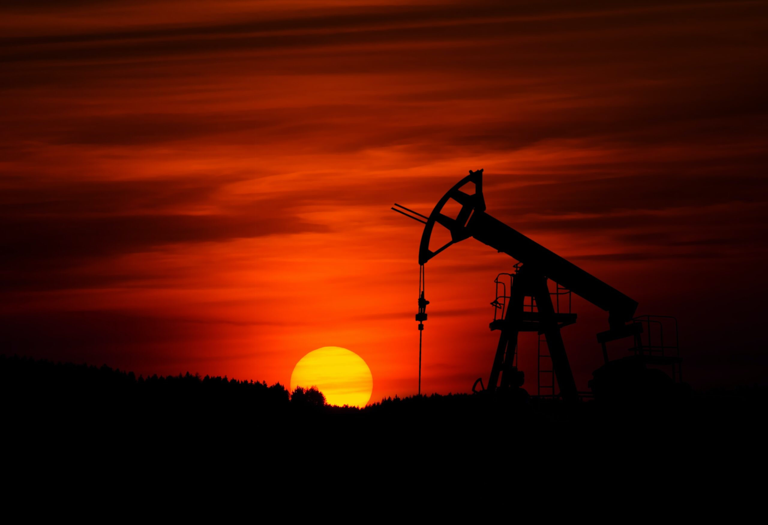 Getting Ahead of the Game: What Determines the Prices of Oil?