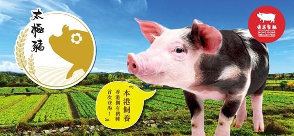 Hong Kong Heritage Pork Consolidates Local Supply Chain and Provides Fresh Pork to the Hong Kong Market